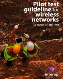 Interop Pilot Test Guideline for Wireless Networks